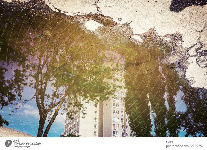 Heimat ist kein Ort ... Häusliches Leben Haus Umwelt Natur Klima Wetter Baum Gebäude Fassade Fenster Beton träumen nachhaltig trist Stimmung Idylle