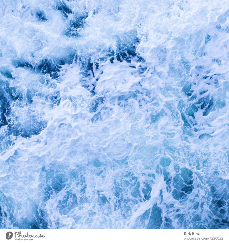Schraubenwasser Natur blau Wasser weiß Meer Umwelt Leben Schwimmen & Baden frisch Wellen authentisch nass Ostsee Hafen Flüssigkeit Nordsee