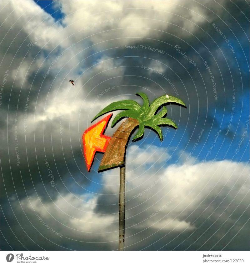 Traum vom Fernweh Ferien & Urlaub & Reisen Farbe Sommer Erholung Wolken Freude Wege & Pfade Freiheit Feste & Feiern fliegen träumen orange Luftverkehr Fröhlichkeit Beginn Hinweisschild