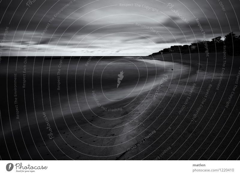 800 Natur Landschaft Pflanze Urelemente Sand Luft Wasser Himmel Wolken Horizont Wetter schlechtes Wetter Baum Wellen Küste Strand Bucht Ostsee Menschenleer