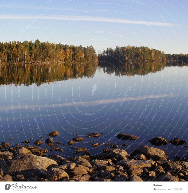 Stilles Wasser See Baum Wolken Schleier Reflexion & Spiegelung Strand ruhig Streifen grün Herbst Wellen Küste Wald Frieden Insel Stein Himmel blau armsjön