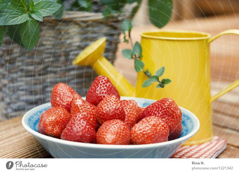 Lecker Erdbeeren III Frucht Bioprodukte Vegetarische Ernährung Schalen & Schüsseln Gießkanne authentisch lecker natürlich süß genießen Minze Korb Holztisch