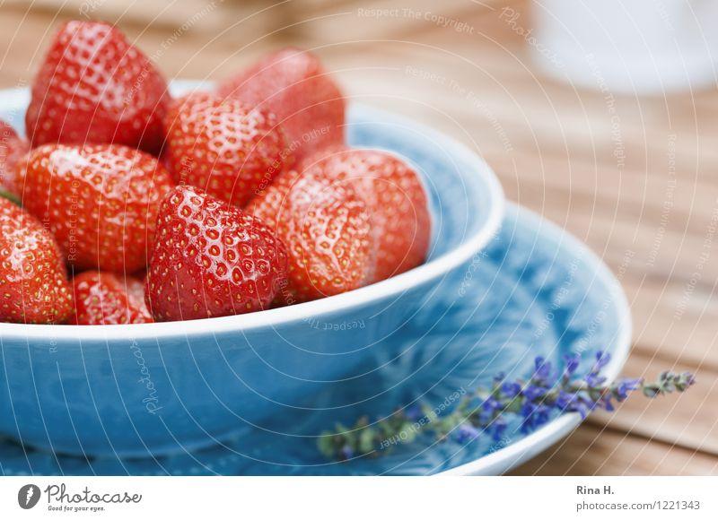Lecker Erdbeeren Frucht Vegetarische Ernährung Teller Schalen & Schüsseln lecker natürlich saftig süß Holztisch rein Außenaufnahme Menschenleer
