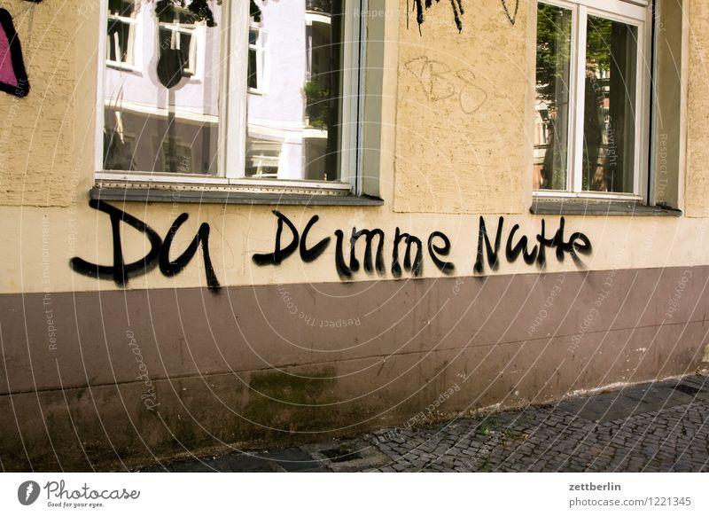 Du dumme Nutte Fassade Haus Wohnhaus Graffiti Schriftzeichen schreiben Beleidigung beschmiert schimpfen Schimpfwort Gesichtsausdruck Ausdruck kraftausdruck
