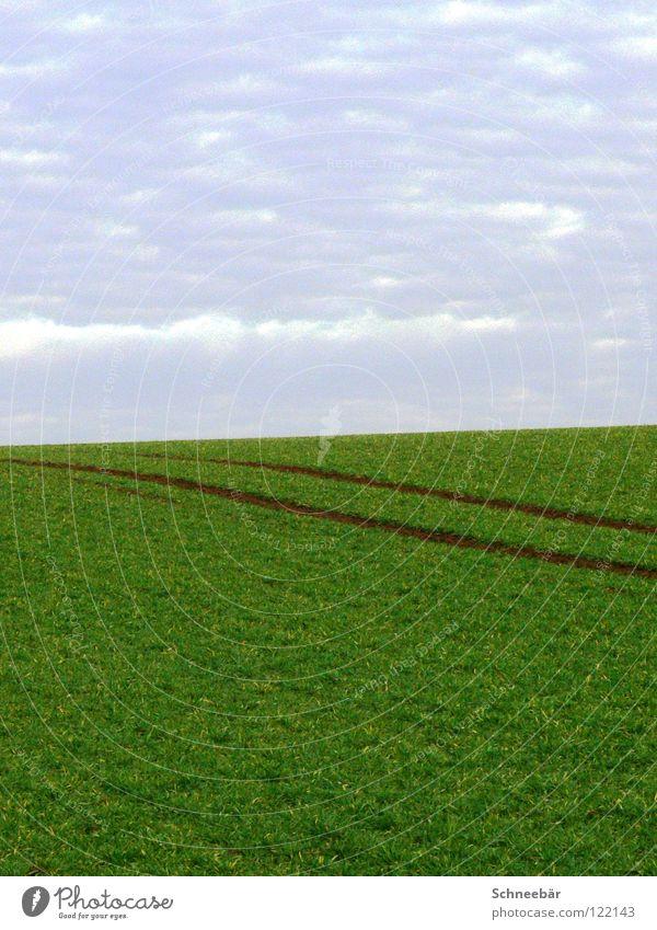 Reifenspuren im Frühling Ferne Feld ländlich Maschine leer 2 Horizont Unendlichkeit Landschaft grün Himmel auf dem Land Spuren Pflanze Natur Langeweile Linie
