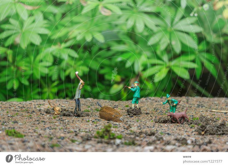 Schneckenjagd - die Falle Jagd Garten Natur Pflanze Tier Frühling Blume Architektur Fressen krabbeln schleimig Umweltschutz Ziel Austrieb Bio Biotop Chemie