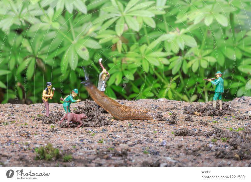 Schneckenjagd - Attacke! Natur Pflanze Blume Tier Architektur Frühling Garten Ziel Spanien Jagd Umweltschutz Fressen krabbeln langsam Biotop zielstrebig
