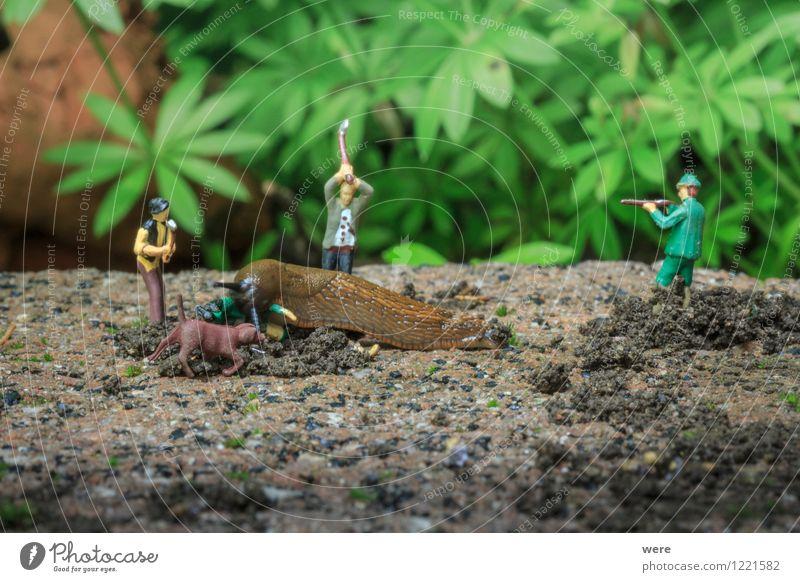 Schneckenjagd - Desaster (Ende) Natur Pflanze Blume Tier Architektur Frühling Garten Ziel Spanien Jagd Umweltschutz Fressen krabbeln langsam Biotop zielstrebig