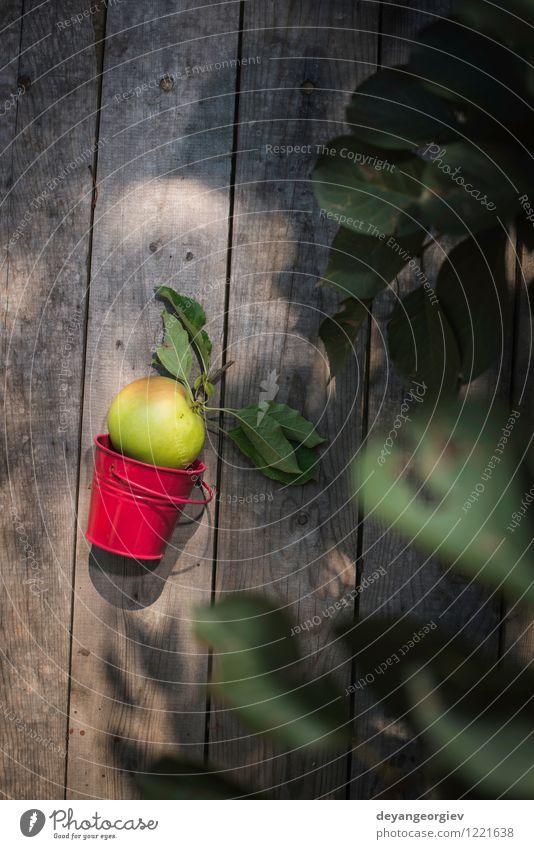 Apple auf Holzboden Frucht Apfel Diät Sommer Garten Gartenarbeit Natur Pflanze Herbst Baum Blatt Wachstum frisch lecker natürlich saftig grün rot Farbe Ast