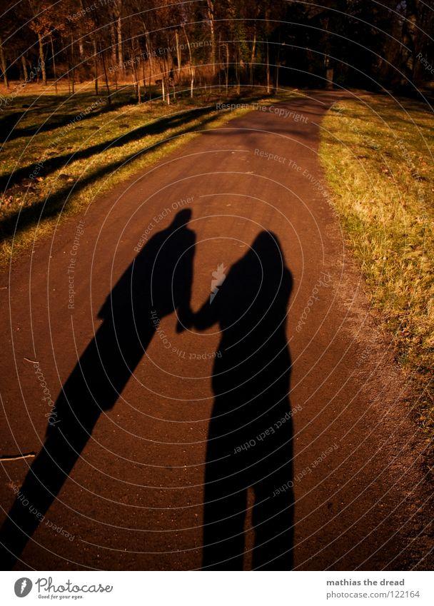 TOGETHER Partnerschaft Zusammenhalt gehen Liebe Vertrauen Kraft Paar spaziern Schatten Silhouette Wege & Pfade paarweise Liebespaar Zusammensein Zuneigung
