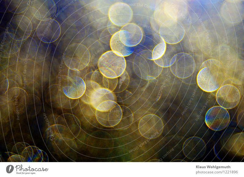 300 Newtonsche Ringe Sommer Herbst glänzend leuchten schön blau braun gelb grün schwarz türkis weiß Unschärfe Tau Farbfoto Außenaufnahme Nahaufnahme