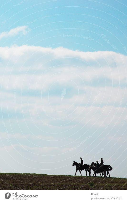ride on! Pferd Ausritt laufen Ausflug Wolken Feld Silhouette Himmel Reitsport Reiter blau Natur