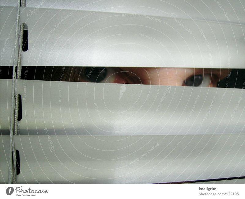 Hide and seek Suche Jalousie verstecken Blick Lamelle silber hell blaue Augen Reflexion & Spiegelung