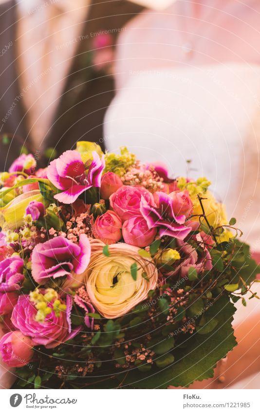 Ja, ich will Mensch Paar Partner Pflanze Blume Rose Blatt Blüte schön grün rosa Glück Blumenstrauß Ehe Hochzeit Farbfoto Innenaufnahme Nahaufnahme