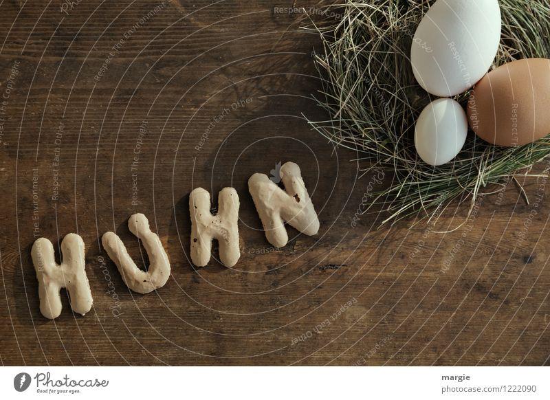 HUHN Tier Essen braun Lebensmittel Schriftzeichen Ernährung Kochen & Garen & Backen Zeichen Ostern Ziffern & Zahlen Bioprodukte Frühstück Ei Diät Haushalt