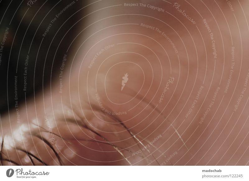 SEESUCHT Wimpern Biometrie Sicherheit einzigartig Anatomie Gesundheitswesen Nahaufnahme identifizieren entdecken Sinnesorgane wahrnehmen braun grau Gefühle