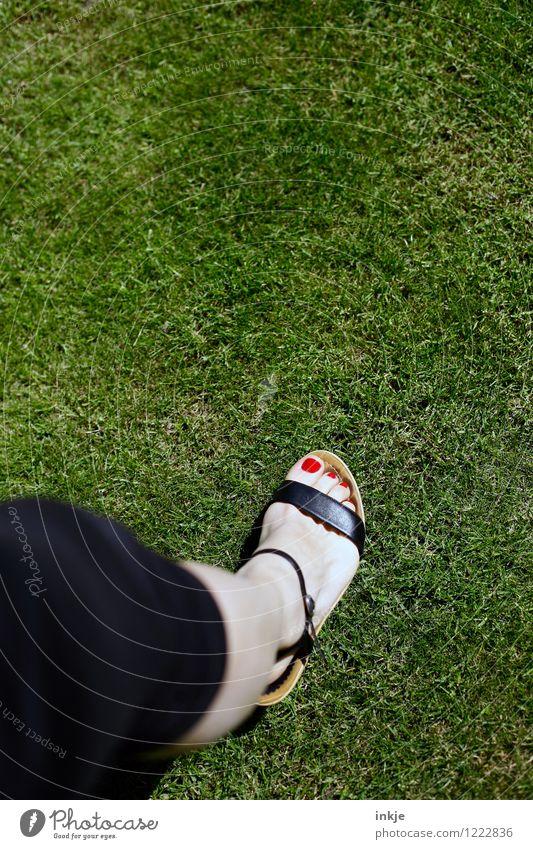 man sagt, Blässe sei edel Mensch Frau Natur schön grün Sommer rot Erwachsene Leben Wiese Gras Stil Garten Lifestyle gehen Mode