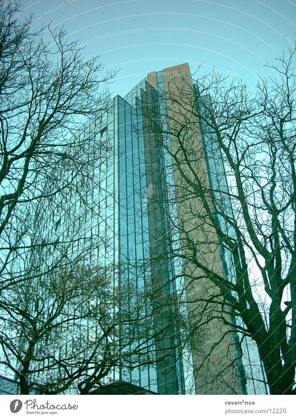 up_in_the_sky Himmel Baum Architektur Glas Beton Spiegel maritim Ulm