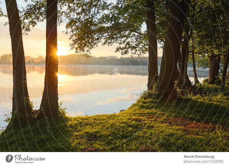 Die Welt in Ordnung Himmel Natur Ferien & Urlaub & Reisen Pflanze Sommer Wasser Baum Erholung Landschaft Wolken ruhig Ferne Wald Herbst Frühling Gras