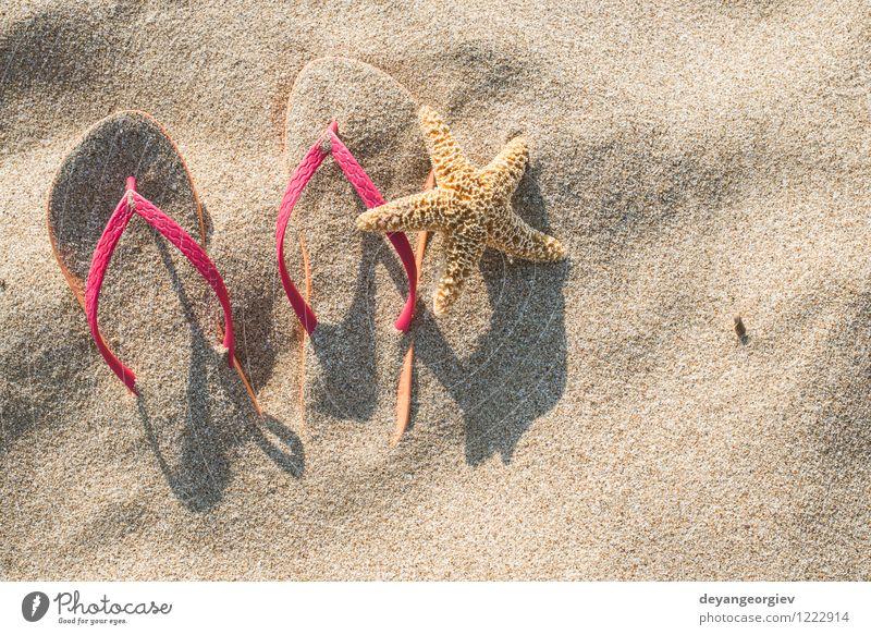 Natur Ferien & Urlaub & Reisen blau Sommer Sonne Erholung Meer Strand Mode hell Sand Freizeit & Hobby Tourismus Schuhe Entwurf tropisch