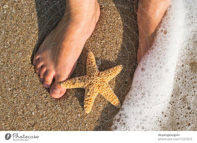 Seestern und Füße am Strand Mensch Frau Natur Ferien & Urlaub & Reisen blau Sommer Sonne Erholung Meer Mädchen Erwachsene Küste Fuß Sand Design