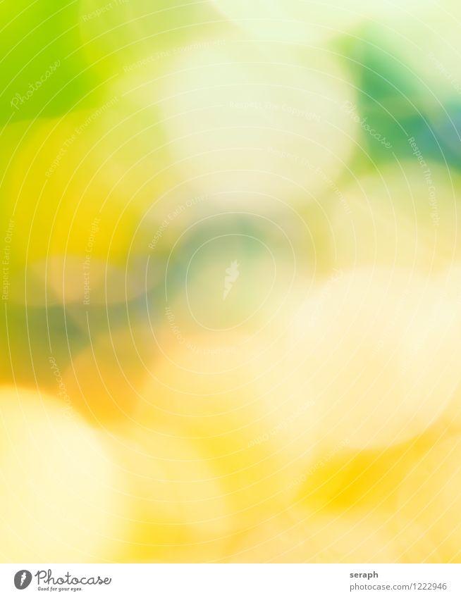 Lichter Sommer Kunst glänzend leuchten frisch schön Kitsch rund weich Freude Farbe Leichtigkeit träumen leicht Bühnenbeleuchtung Kreis gefleckt Beleuchtung