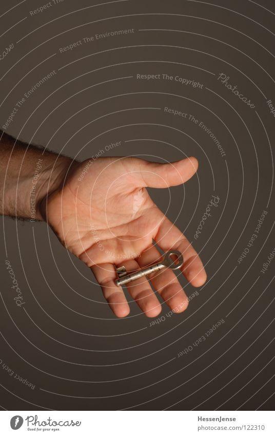 Hand 20 Hand Erwachsene Gefühle Hintergrundbild Zusammensein Wachstum Aktion Arme Haut Finger Hoffnung Vertrauen Flüssigkeit Schmuck Konflikt & Streit reich