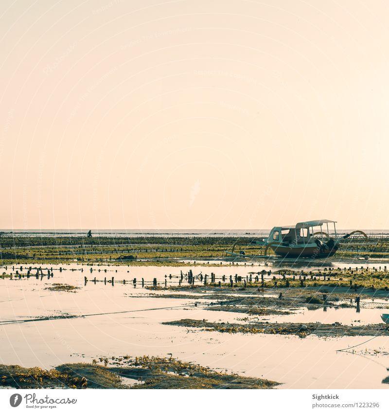 Gestrandet Landschaft Wasser Wolkenloser Himmel Horizont Sonnenaufgang Sonnenuntergang Sommer Schönes Wetter Strand Meer Indischer Ozean Fischerboot
