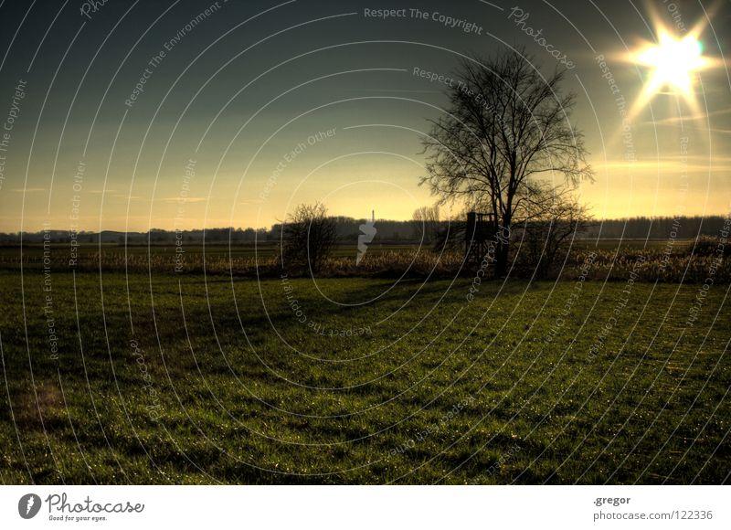 kurz vor Weltuntergang Himmel Baum Sonne ruhig Ferne Wiese Horizont Feld gefährlich Vergänglichkeit Klarheit geheimnisvoll Landwirtschaft Jagd Amerika mystisch