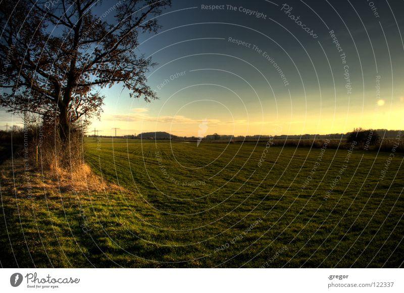 Feld gefällt. Wiese Jäger Landwirtschaft Ackerbau ruhig Horizont Ferne Baum Wegrand Waldlichtung Frieden Ranger Himmel Konzentration Weide Erde Pflugland