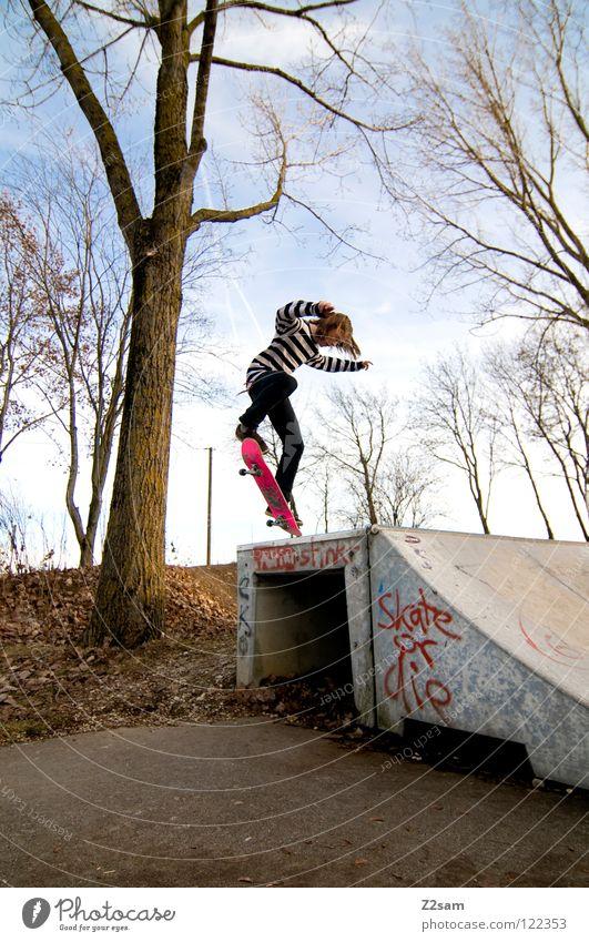 backside 180° Himmel Jugendliche blau Baum Sport Haare & Frisuren Bewegung springen Stil Zufriedenheit modern Geschwindigkeit Aktion Coolness fahren Jeanshose