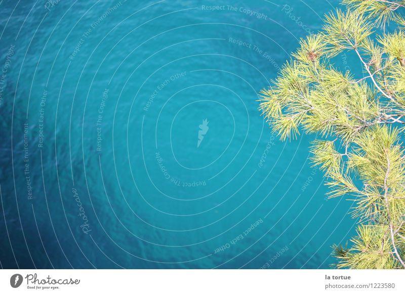 ozeanblau Natur Ferien & Urlaub & Reisen blau Sommer Wasser Sonne Erholung Meer ruhig Wärme natürlich Küste Schwimmen & Baden springen Tourismus Idylle