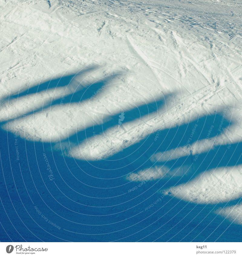Schneegeflüster Mensch Ferien & Urlaub & Reisen blau Freude Winter Berge u. Gebirge Menschengruppe Freiheit fliegen springen Freizeit & Hobby Erfolg stehen