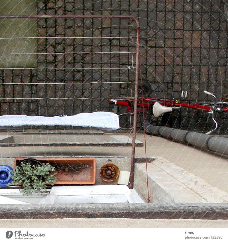 Kleinstgarten (raucherfreundlich) Fenster Fahrrad Aschenbecher Handtuch Fallrohr Abfluss pflastern Grünpflanze Beton Blumenkasten schwindelig Hinterhof