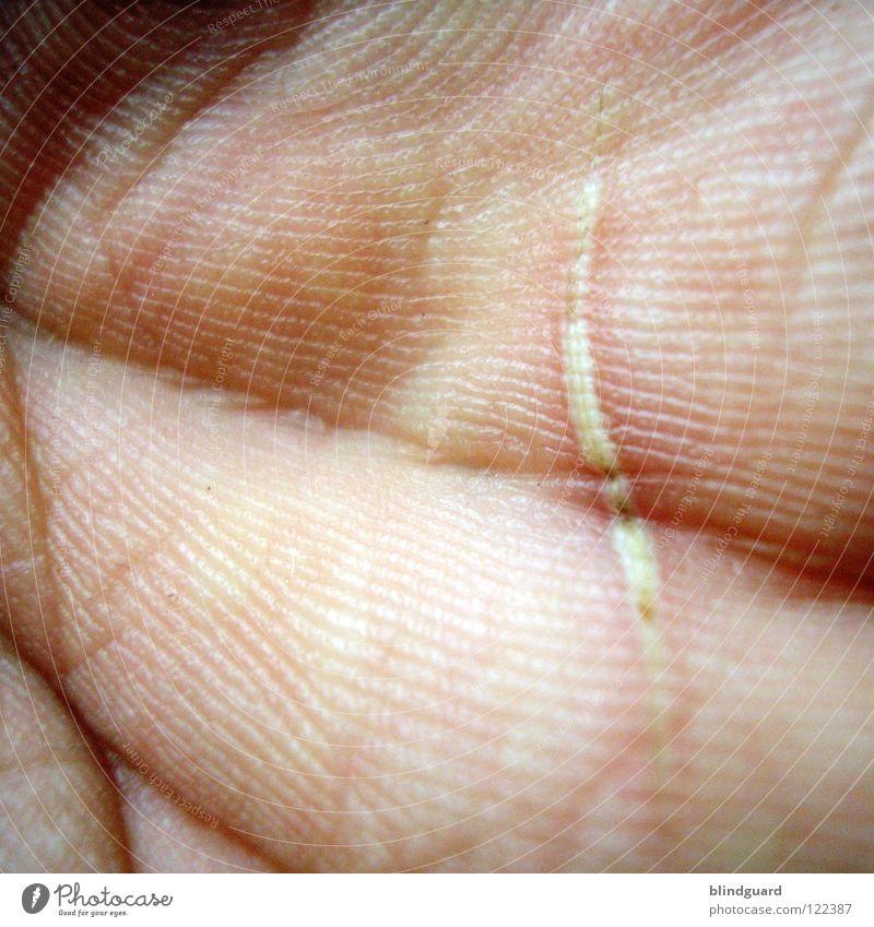 Disturbed Lifeline Hand Wahrsagerei Kaffeesatz Orakel Pore Genetik Muster privat einzigartig Mensch außergewöhnlich Schlag Makroaufnahme Nahaufnahme Mann