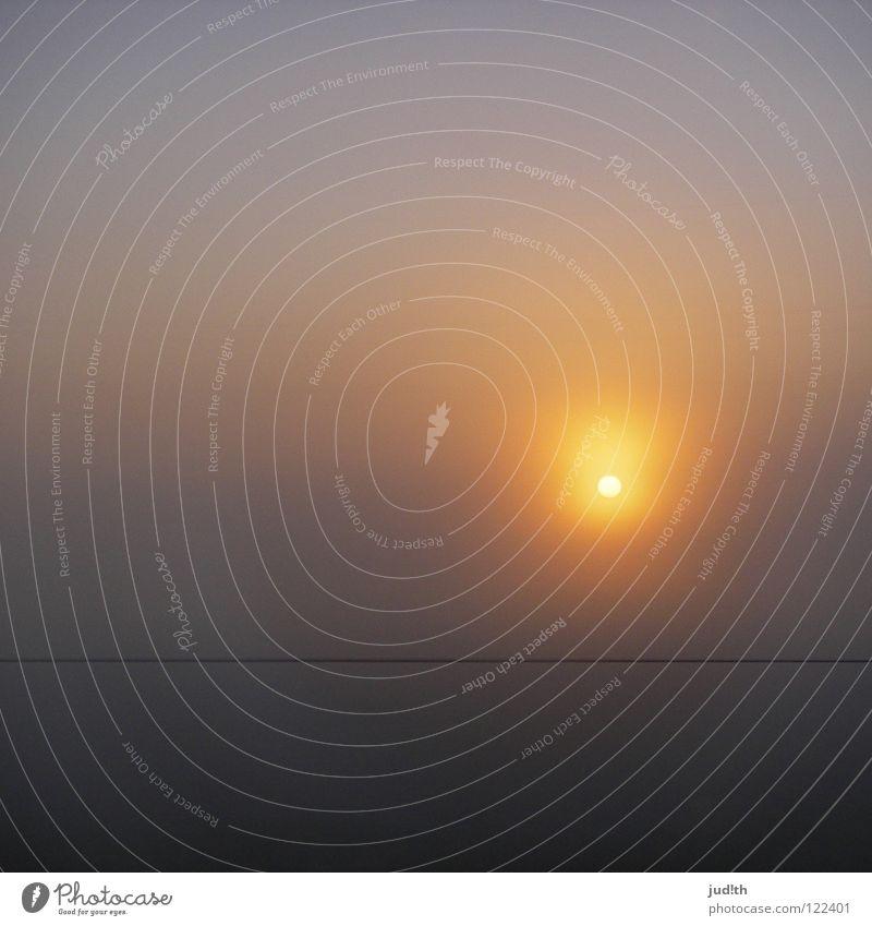Morgennebel Sonnenaufgang Sonnenuntergang Nebel grau Licht Elektrizität Horizont Linie schwarz Sommer Neuanfang Sonnenstrahlen rund Himmelskörper & Weltall