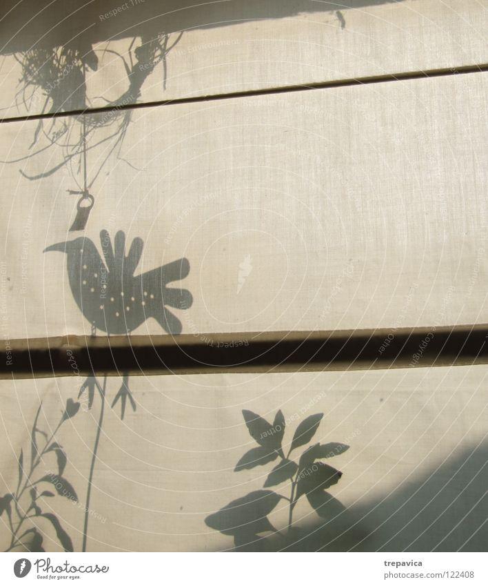 schatten Pflanze Blatt Wiese springen Fenster Frühling Vogel Dekoration & Verzierung zart Stoff Vorhang Gardine Tuch Textilien Schattenspiel