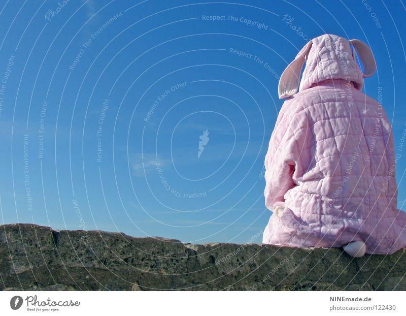HasenMission | 2008 - warten Hase & Kaninchen Ostern rosa weiß Mauer Quaste kuschlig himmelblau Aussicht genießen schön Physik Denken Dinge Hasenohren Freude
