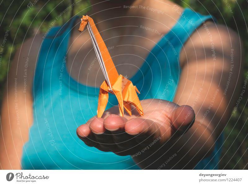 Origami orange Farbe Design Freude Spielen Ferien & Urlaub & Reisen Tourismus Safari Dekoration & Verzierung Handwerk Kunst Zoo Natur Tier Park Papier Spielzeug