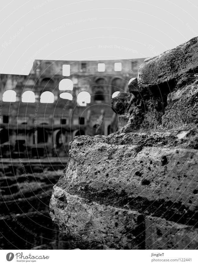 transluzenter heldenepos alt Fenster Stein Mauer Feste & Feiern Denkmal Ruine Loch Wahrzeichen Held Rom antik Bogen Arena Druckerzeugnisse Pore