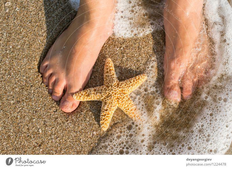 Seestern und Füße am Strand Design Körper Erholung Ferien & Urlaub & Reisen Sommer Sonne Meer Mensch Mädchen Frau Erwachsene Fuß Natur Sand Küste blau Wasser