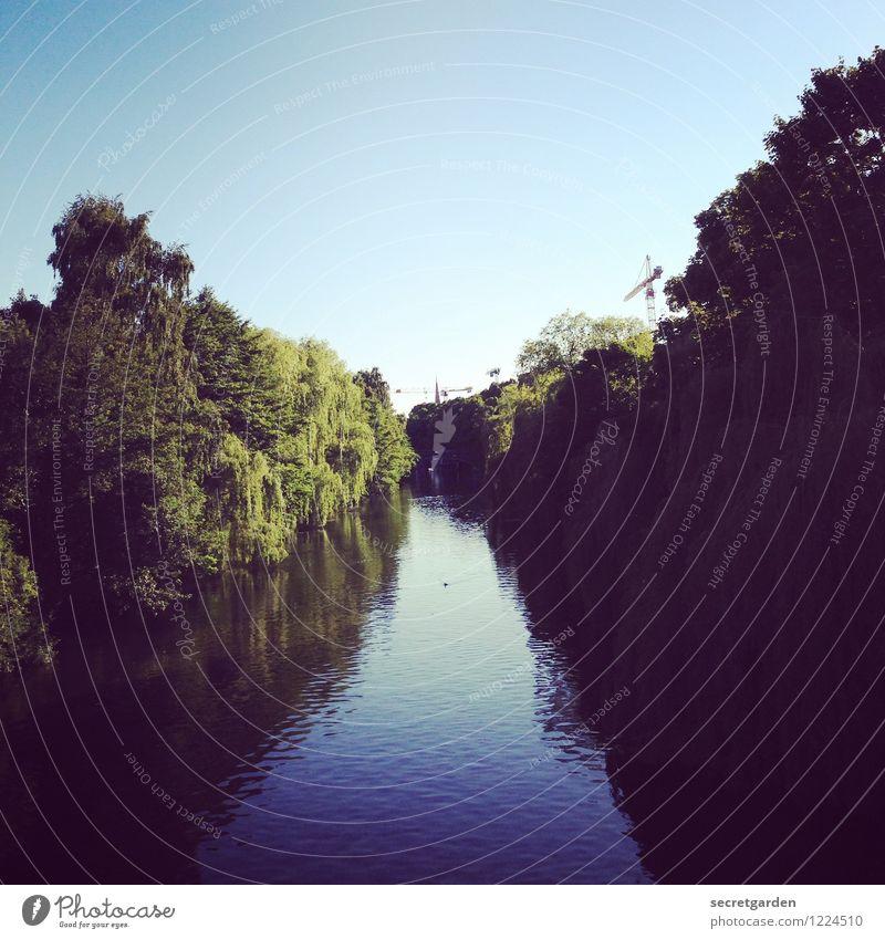 das ziel vor augen. Natur blau Sommer grün Wasser Baum Erholung Einsamkeit ruhig dunkel Freiheit Freizeit & Hobby Sträucher Ausflug Beginn Schönes Wetter