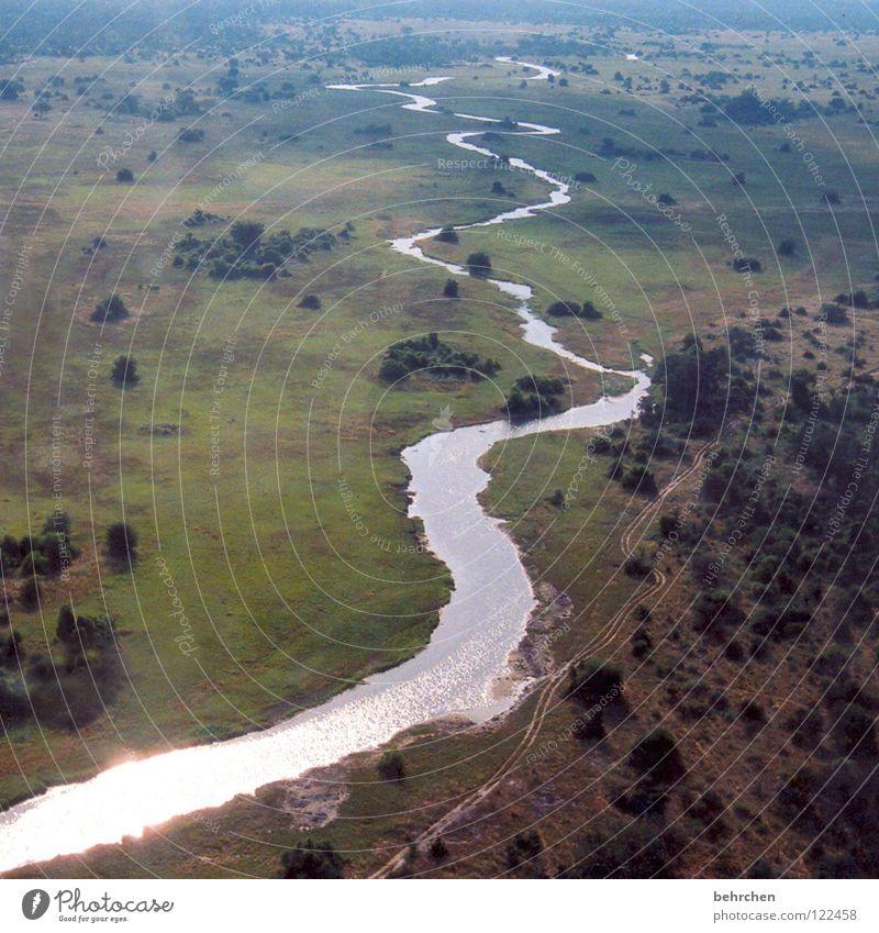 lebenslinie Natur Wasser Baum Ferien & Urlaub & Reisen Ferne Freiheit Landschaft Wärme fliegen frei Luftverkehr Fluss Namibia außergewöhnlich Unendlichkeit