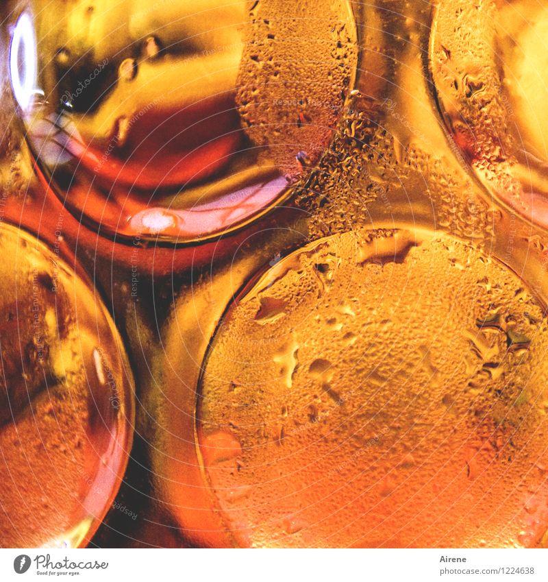 außen rein und innen rein rot kalt gelb orange frisch gold Glas genießen Getränk Lebensfreude trinken Bier Flüssigkeit Jahrmarkt Erfrischung Alkohol