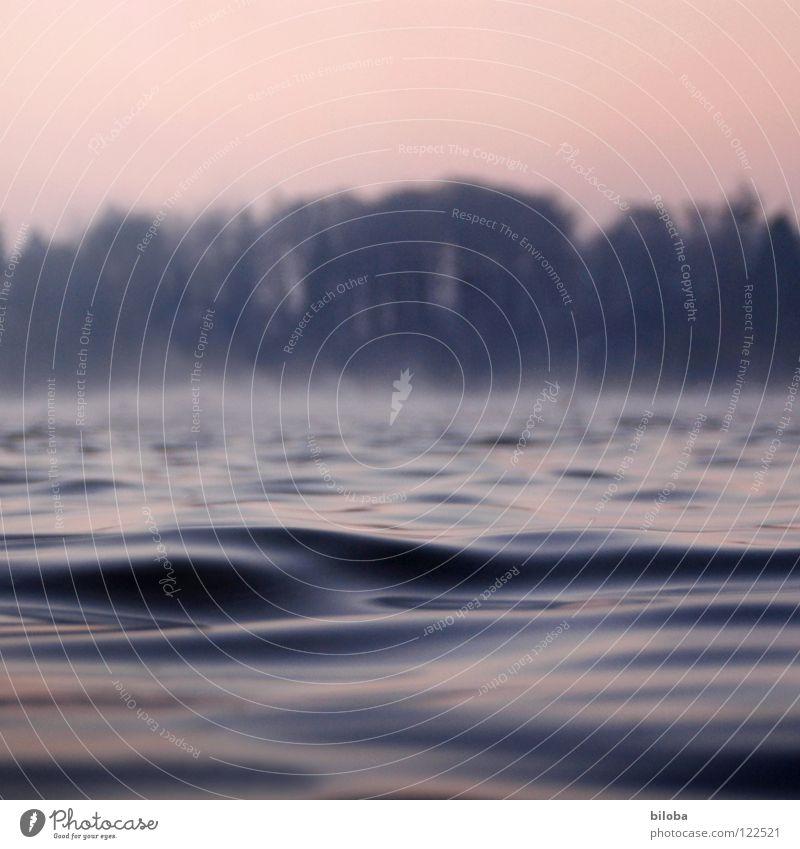 Am See liquide Flüssigkeit Wellen weich zart ruhig beruhigend Nebel grau dunkel bedrohlich leer Luft ursprünglich tief kalt Einsamkeit Ödland Götter schöpfen