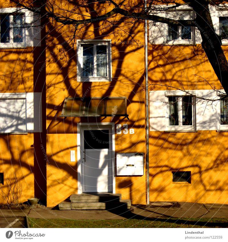GEL83B Baum Haus Fenster Tür Ast Eingang Briefkasten Rollladen