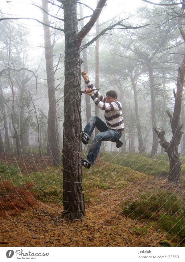 abenteuerlust ;) Natur Jugendliche Baum Freude Wald Herbst Nebel Abenteuer Bodenbelag Klettern festhalten stark sportlich hängen Dynamik Typ