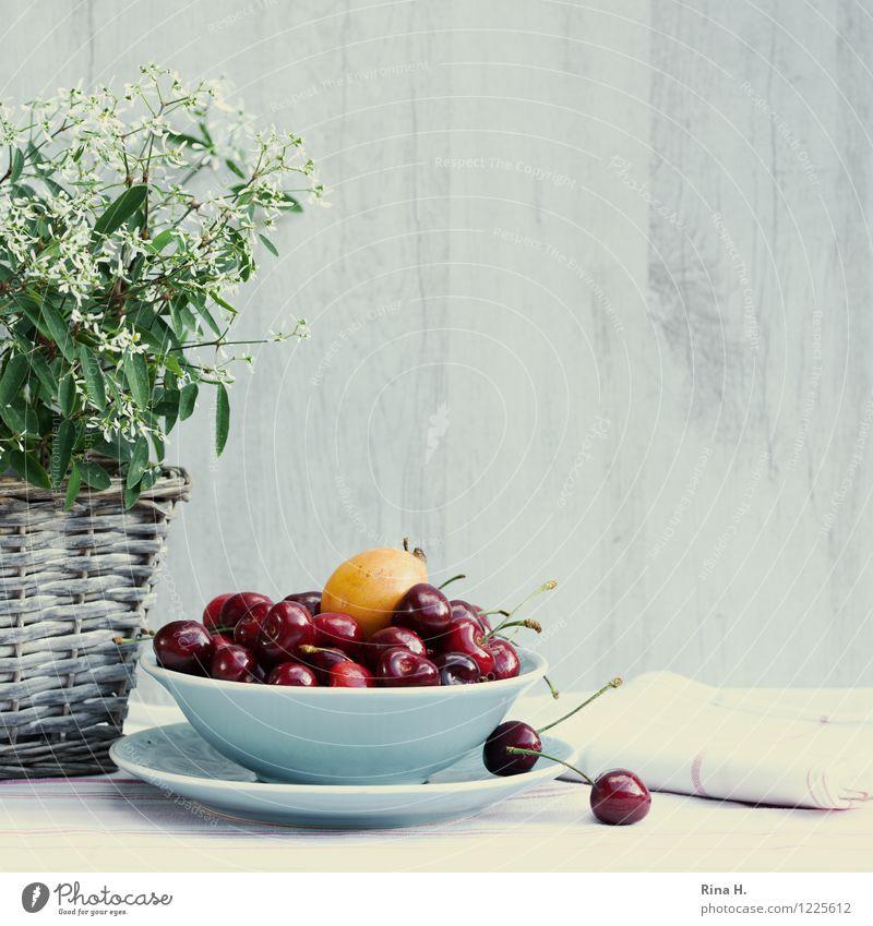 Kirsch und Mispel Sommer Gesundheit hell Frucht süß lecker Bioprodukte Schalen & Schüsseln Teller Vegetarische Ernährung Korb Kirsche Topfpflanze Serviette