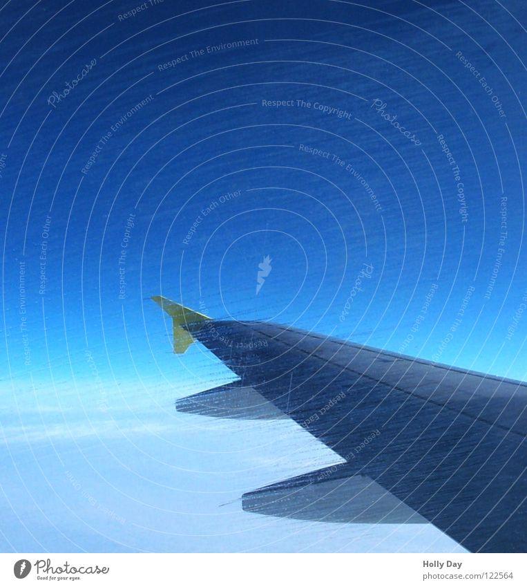 Über den Wolken ... Flugzeug Schliere Fenster Tragflächenspitze blau Streifen Luftverkehr Himmel Blick hinaus Schönes Wetter