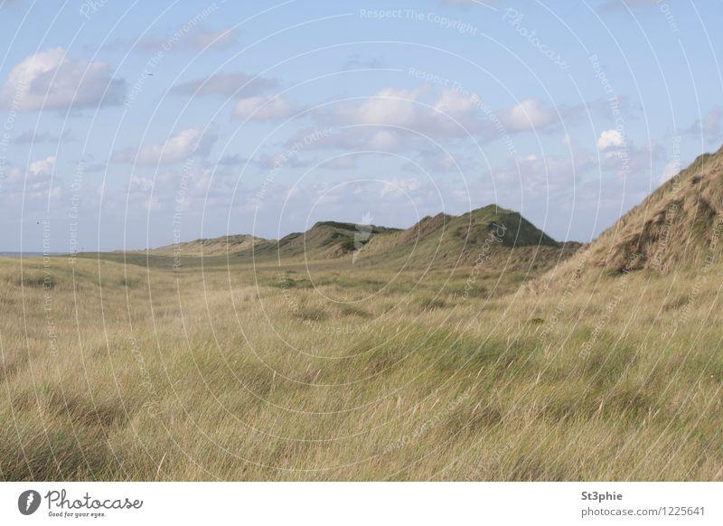 unendlich Erholung ruhig Strand Meer Insel Natur Landschaft Pflanze Sand Himmel Wolken Sonnenlicht Sommer Schönes Wetter Gras Grünpflanze Wiese Hügel Küste